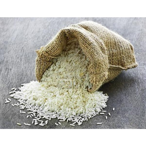 Proteína Hidrolisada do Arroz 100g