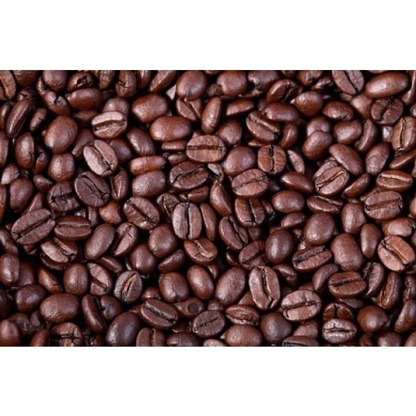 Proteína Hidrolisada do Café 50g