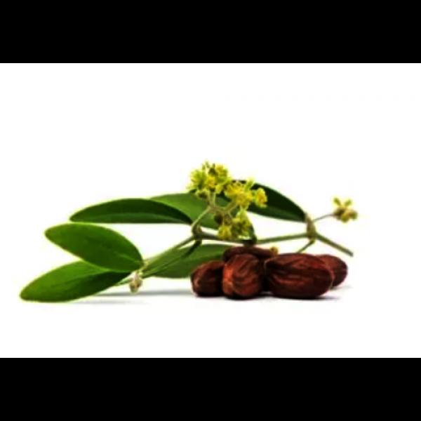 óleo de jojoba