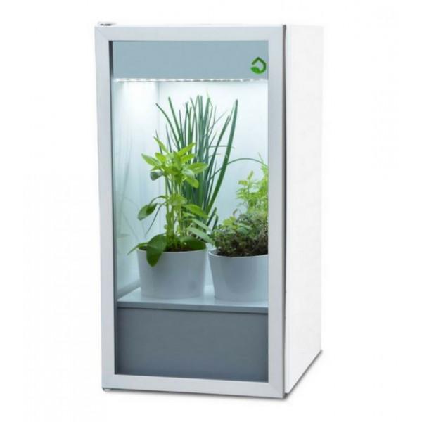 Plantário Mini