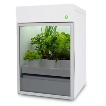 Plantário ONE
